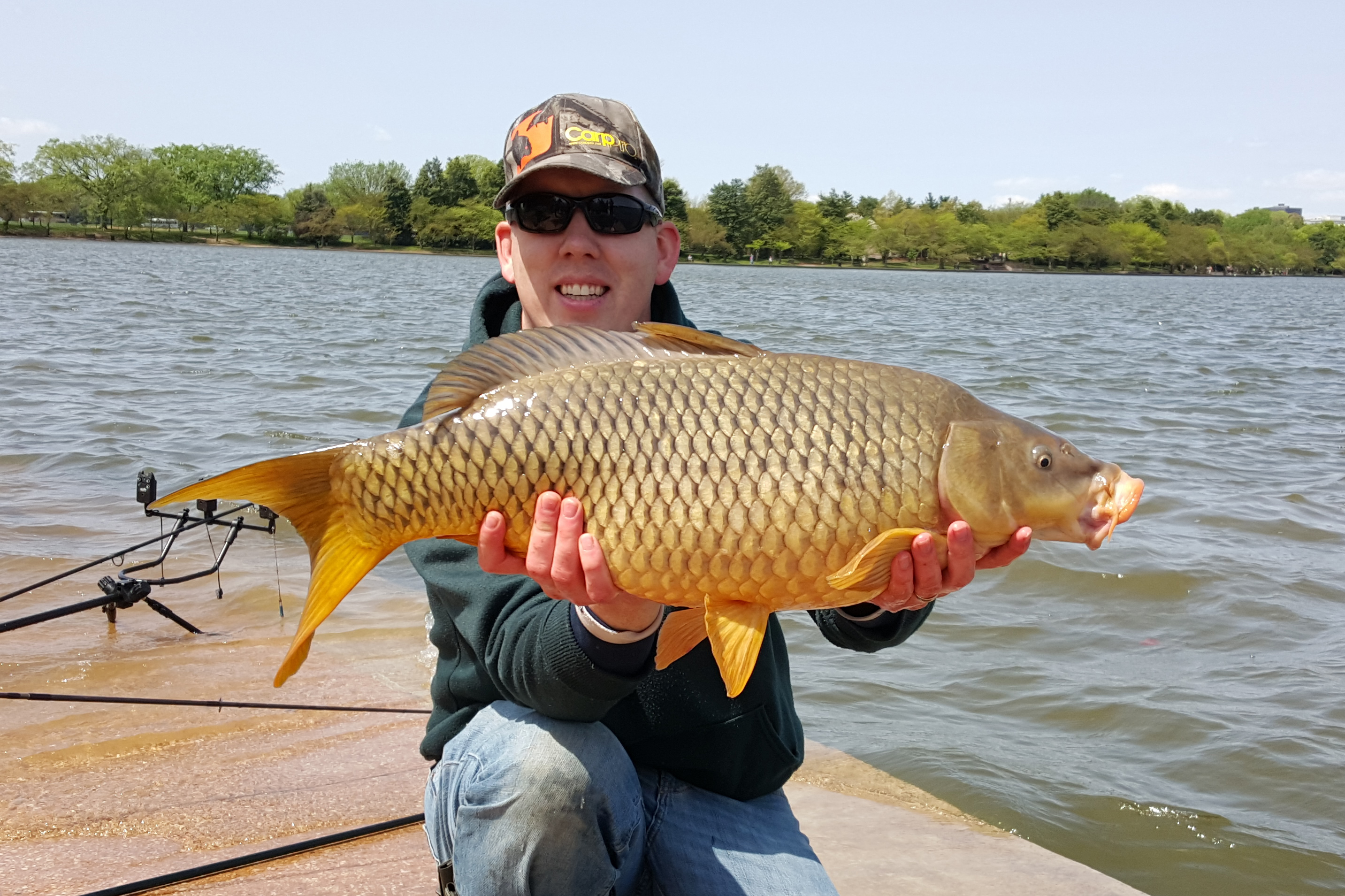 20 lb common from Washington DC