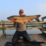 29 lb grass carp