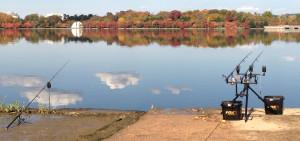 Banner tidal basin image