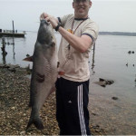 A nice 30+lb blue cat caught in the Potomac on cut herring and a Gamagatsu circle hook. USed a 10' Lamglas surf rod with a high-low rig at 80 yards.
