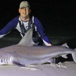 A nice 6-61/2 foot sandbar shark caught in Panama City Beach Florida, from the shore.