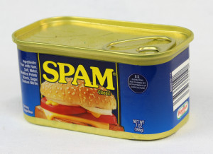 Spam works great as a catfish bait if your are willing to part with breakfast