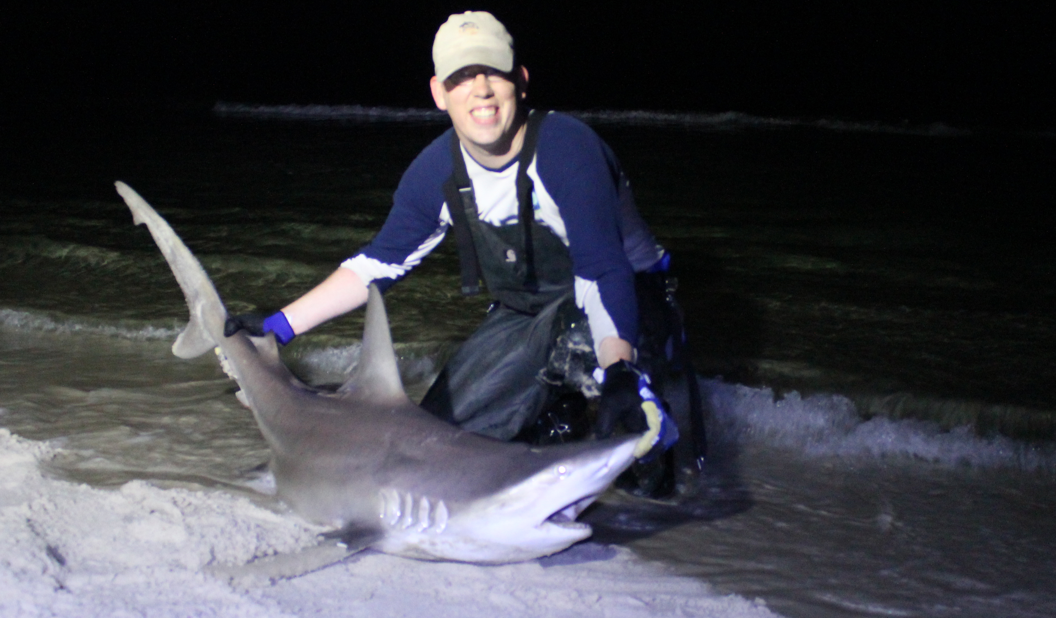 A nice 5-6 foot spinner shark caught in Panama City Beach Florida, from the shore.