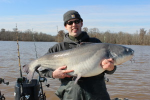 69 lb Blue Catfish from the Tidal James River
