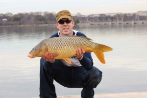 A nice 20 lb carp I caught on my best winter stick mix: bread crumb and sweet corn coated in a Nash sweet corn attractant.