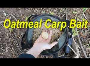 Check out a great video demonstrating the many way to use oatmeal to catch carp.
