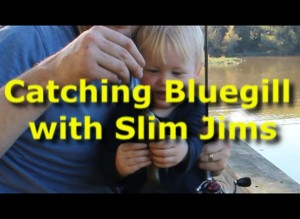 Catching bluegills with Slim Jims.