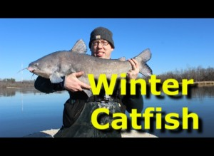 How to catch catfish in the winter