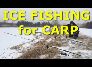 How NOT to catch carp while ice fishing
