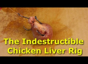 The indestructible chicken liver rig