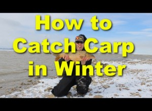 How to catch Carp in the Winter